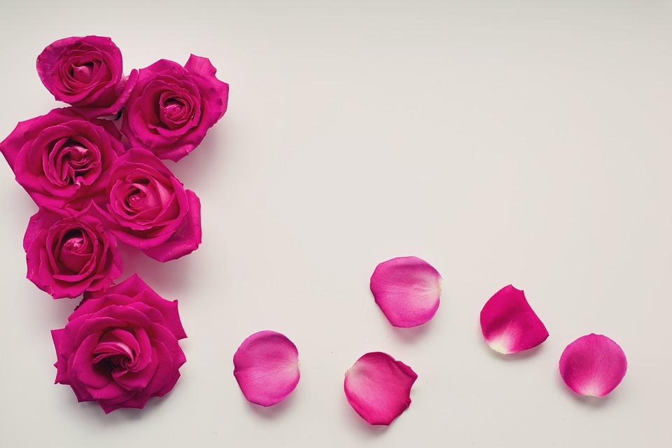 Tout ce qu'il faut savoir sur la table d'honneur des futurs mariés
